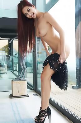 Paula Shy - Ledania