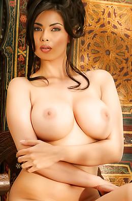 Stunning Pornstar Tera Patrick Revealing Her Body