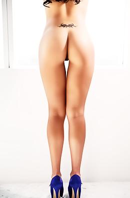Vanessa Navarrete Playboy Mexico